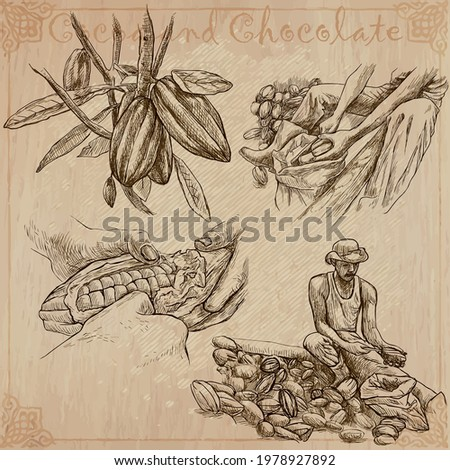 COCOA,cacao and chocolate. Agriculture. Life of a farmer. Cocoa harvesting and processing. Collection of an hand drawing illustrations. Pack of vector illustrations, line art. Set of freehand sketches