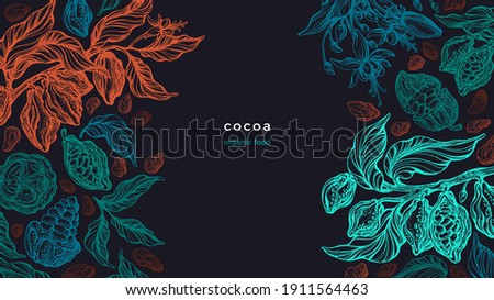 Cocoa plant. Vector graphic background. Sketch branch, texture leaves, bean. Art hand drawn illustration. Organic chocolate, aroma drink, natural butter. Vintage engraved