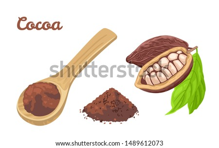Cocoa powder in wooden spoon. Cacao beans with green leaves, heap of chocolate powder isolated on white background. Vector food illustration in cartoon simple flat style.