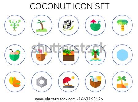 coconut icon set 15 flat