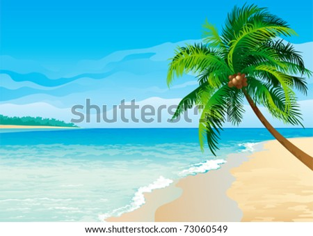 Coconut palm tree. Vector illustration  of coconut palm tree on tropical beach - Horizontal format.