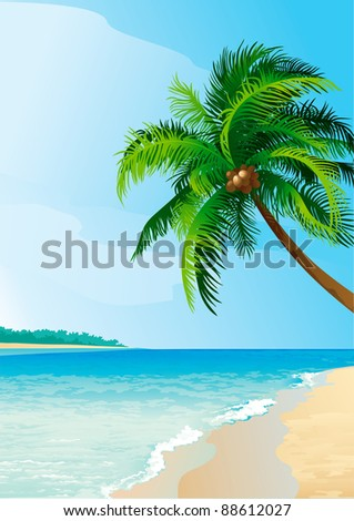 Coconut palm tree . Vector illustration  of coconut palm tree on tropical beach. Vertical format.