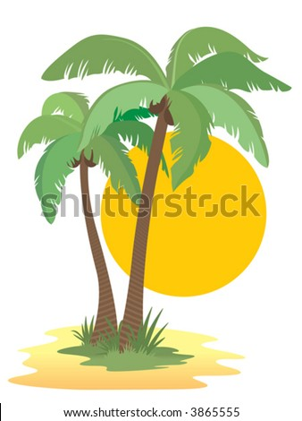 Coconut palm trees and sun