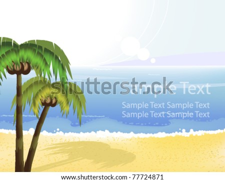 coconut palms grow on the sandy
