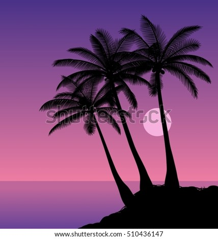 coconut palms silhouettes of