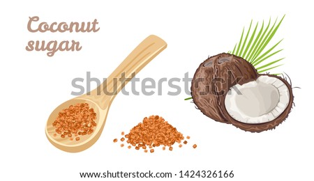 Coconut sugar set. Natural healthy sweetener in a wooden spoon, whole and half coconut, pile of brown sugar isolated on white background. Vector illustration in cartoon simple flat style.