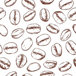 Coffee bean pattern including seamless on white background. sketch of coffee beans. Hand drawn coffee beans vector.