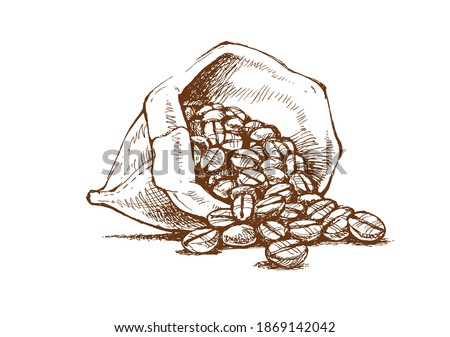 coffee beans in a bag, freehand drawing, vector image