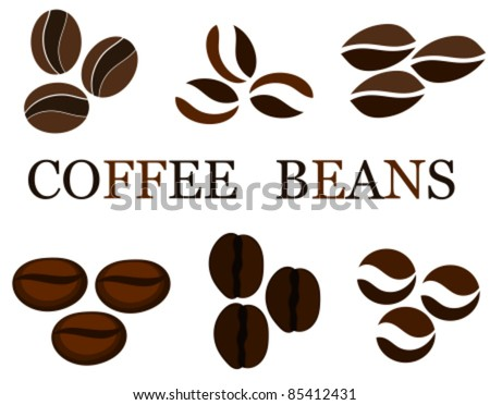 Coffee beans various kinds in collection. Vector illustration