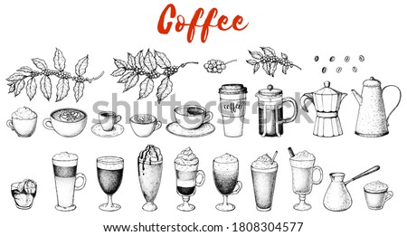 Coffee drink hand drawn collection. Sketch graphic elements for menu design. Vintage vector illustration. Various coffee drinks set. Coffee cups, beans and coffee makers illustration.