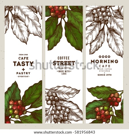 coffee tree illustration