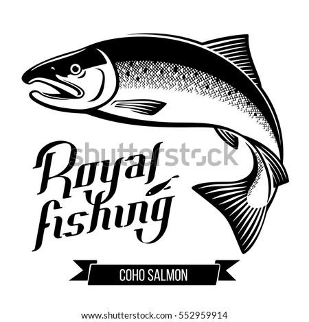 coho salmon fish black and