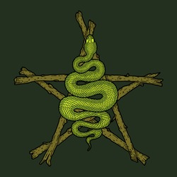 Coiled snake over sticks pentagram detailed illustration. Tribal occult serpent isolated over dark green background. Vector magic witchcraft design.