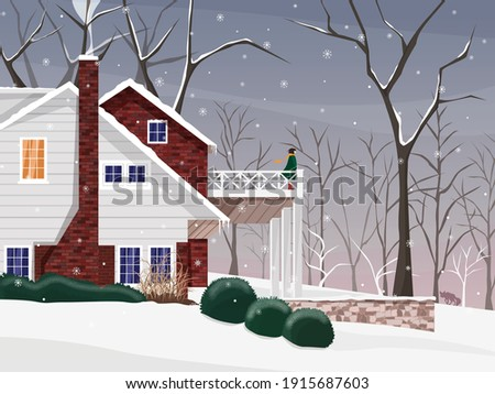 cold nordic scenery with a