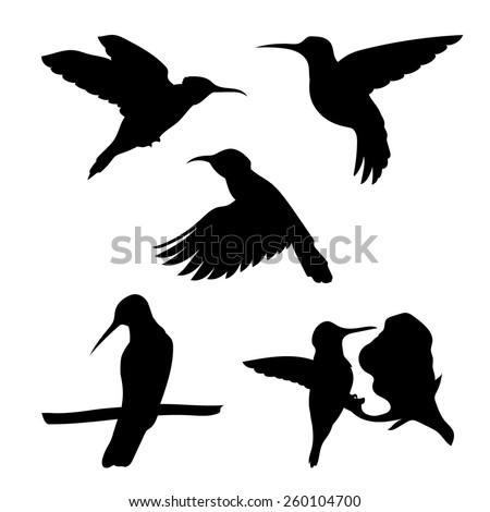colibri set of silhouettes