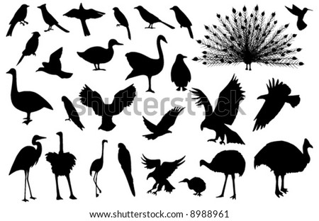 Collected, stylized vector silhouettes of 27 birds (more detailed versions available) - stock vector