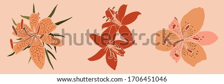 Collection Art collage lily flower in a minimal trendy style. Silhouette of lily plants in a contemporary simple abstract style on a pink background. Vector illustration For t-Shirt Print, card, flyer