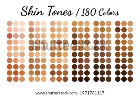 Collection Color palette, Skin tones. Flat vector illustration. ストックフォト ©