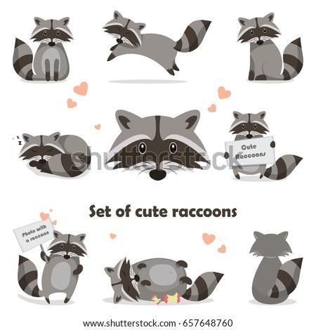 Collection isolated funny raccoon. Emotion little raccoon. Vector set cute raccoon. Cartoon raccoon in children style. Stock photo ©