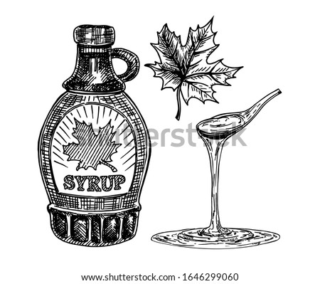 Collection of a bottle of maple syrup and maple leaves. Maple syrup dripping from a spoon. Hand drawn Photo stock ©