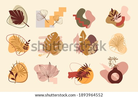 Collection of abstract backgrounds, logo elements. Organic elements and brushes. Tropical leaves set
