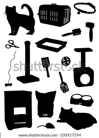 Collection of accessories for a cat