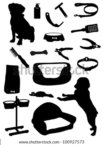 Collection of accessories for a dog