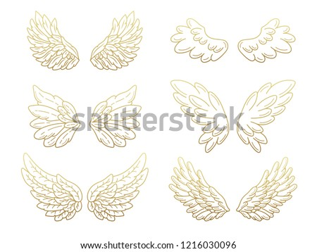 collection of angel wings  wide