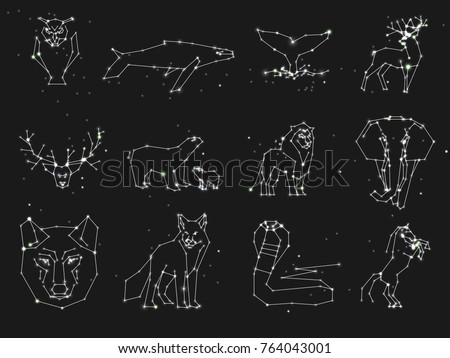 Collection of animals constellation on dark sky. Wild animals with line and stars, horoscope style. Constellation animals for cards, elephant, owl, wolf and other animal