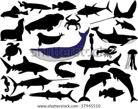 collection of aquatic wildlife vector silhouettes