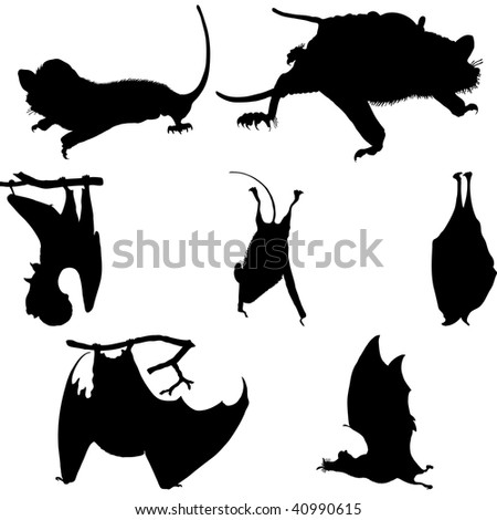 Collection of bats silhouettes. Vector illustration. - stock vector