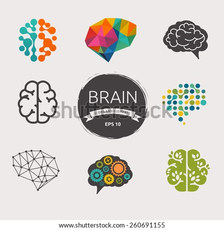 collection of brain  creation