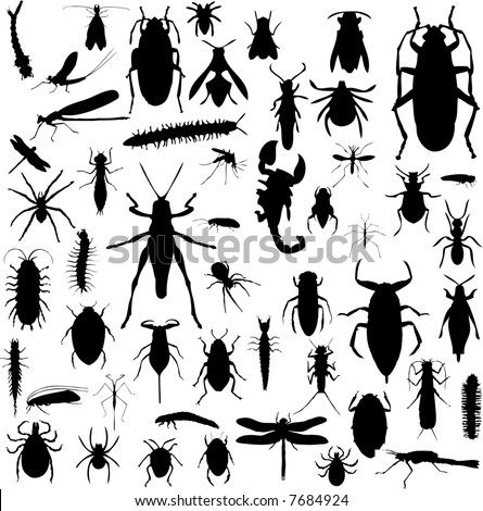 Collection of bug silhouettes in black and white