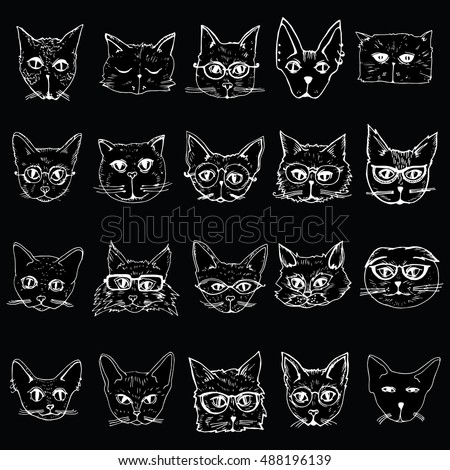 collection of cats portraits