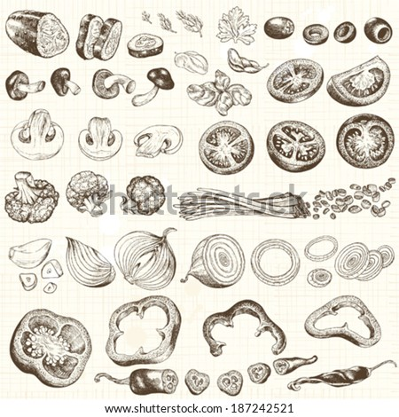 Collection of chopped vegetables, hand-drawn illustration.