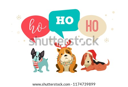 collection of christmas dogs merry christmas illustrations of cute pets with accessories like a knited