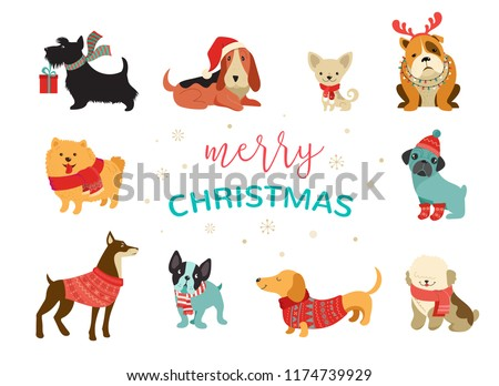Cute Cat And Dog Stickers Download Free Vector Art Stock Graphics