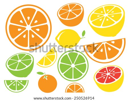 collection of citrus slices