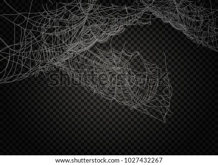Collection of Cobweb, isolated on black, transparent background. #1027432267