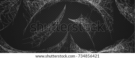 collection of cobweb  isolated