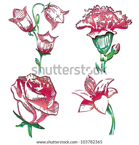 Bell Flowers Drawing Stock-vector-collection-of