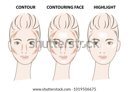 Collection of cosmetics contouring beauty face vector