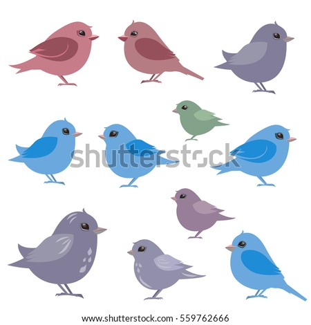 collection of couples birds for