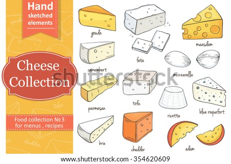 Collection of Cut sliced cheese assortment. Decorative icons set. Vector illustration of for design menus, recipes and packages product.