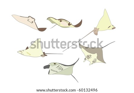 Collection of devil manta rays - stock vector