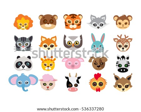 collection of different animal