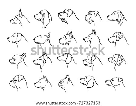 collection of dogs heads