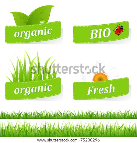 Collection Of Ecological Stickers, Isolated On White Background, Vector Illustration