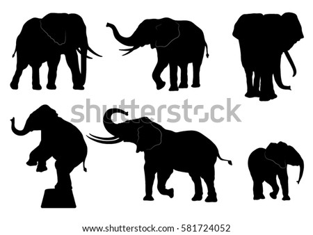Collection of Elephant Silhouettes. Vector Illustration