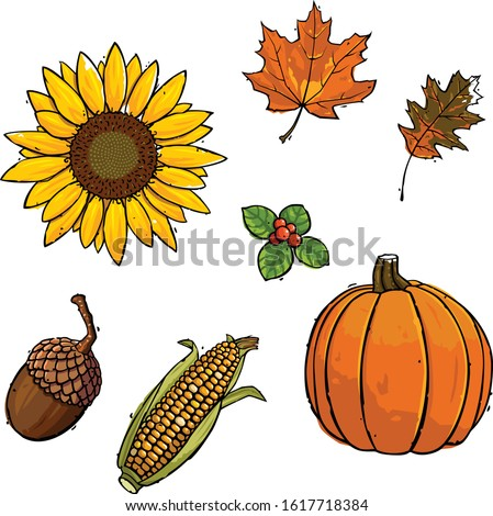 collection of fall and